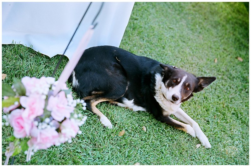 Sonora_Wedding_Photographer_0117