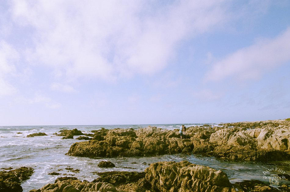 Monterey_Wedding_Photographer_0178